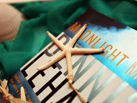 Conchas marinas y libros en Amelia Island, Florida