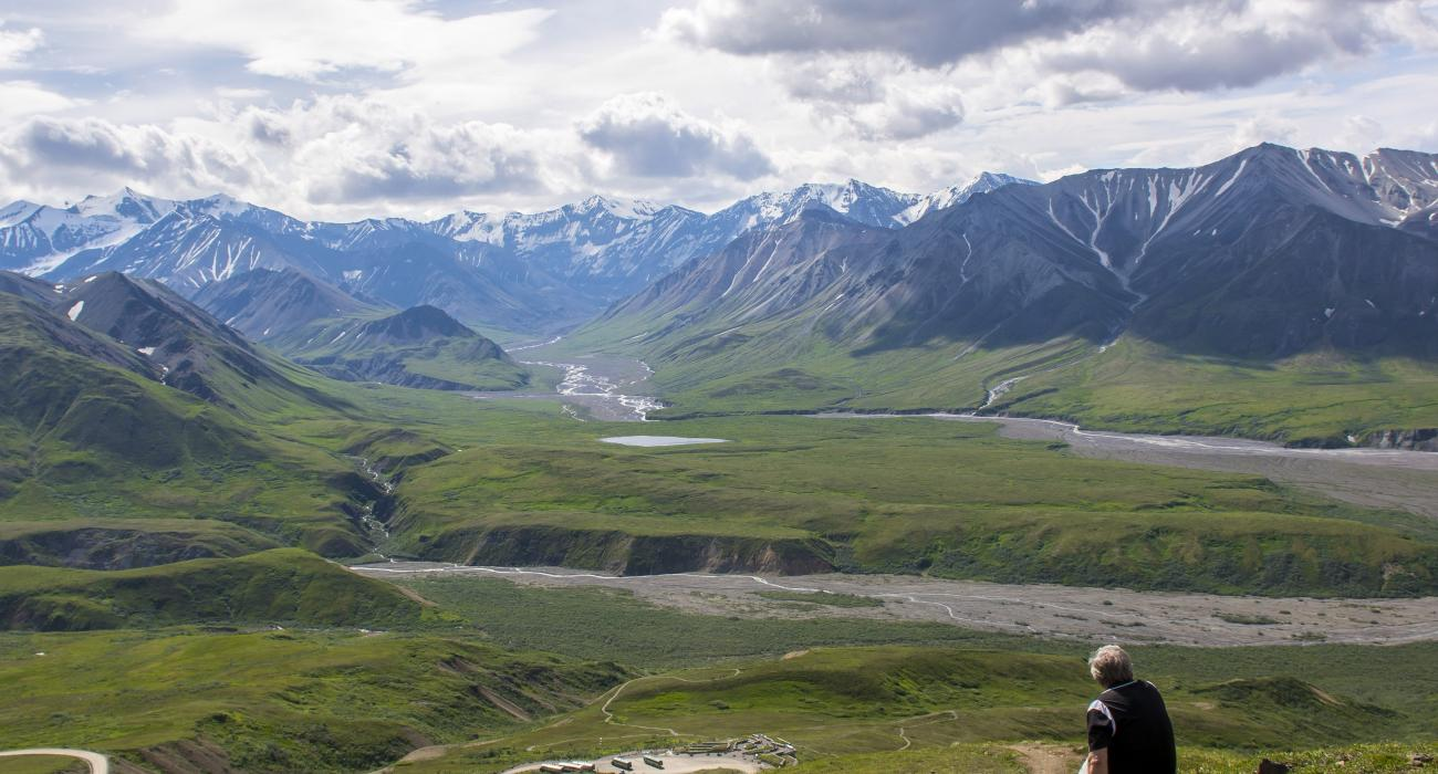 Nacional: Parque Nacional Denali