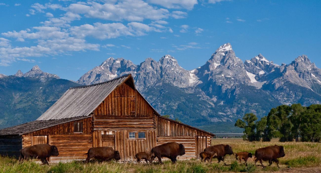 Resultado de imagen para Wyoming